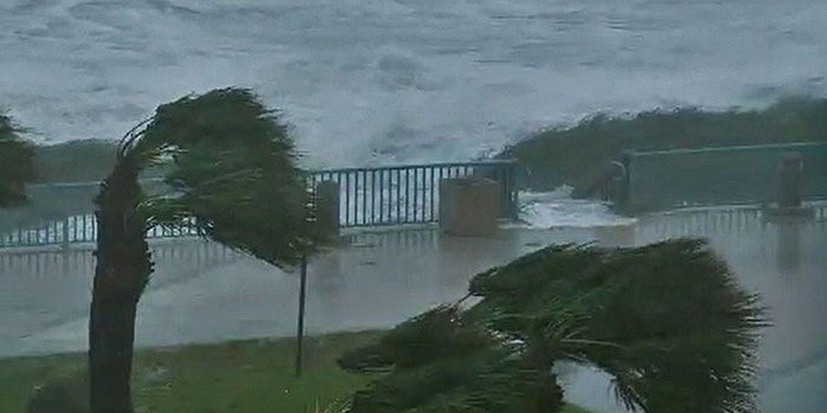 2017 Atlantic hurricane season predicted to be busy