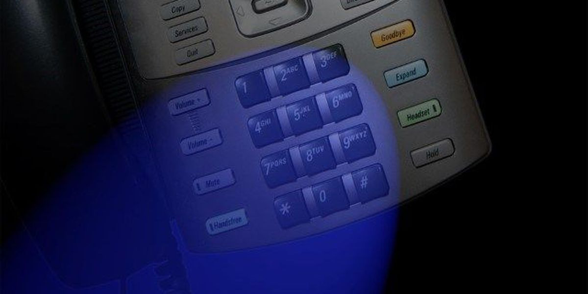 Lee County Sheriff's Office warns of reported phone scam