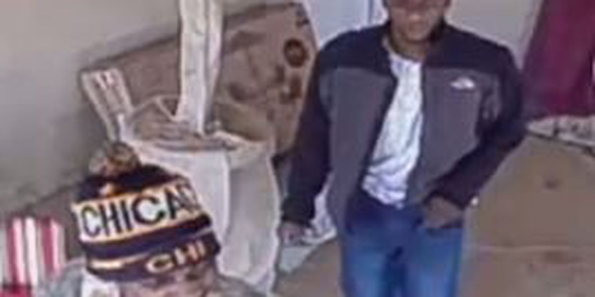 Opelika police in search of burglary and theft suspects