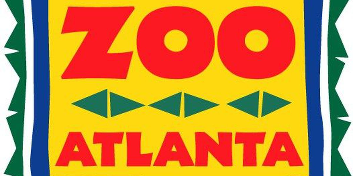 Zoo Atlanta offers exclusive Fourth of July admission deal