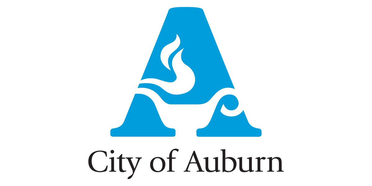 Auburn to validate downtown parking for shoppers