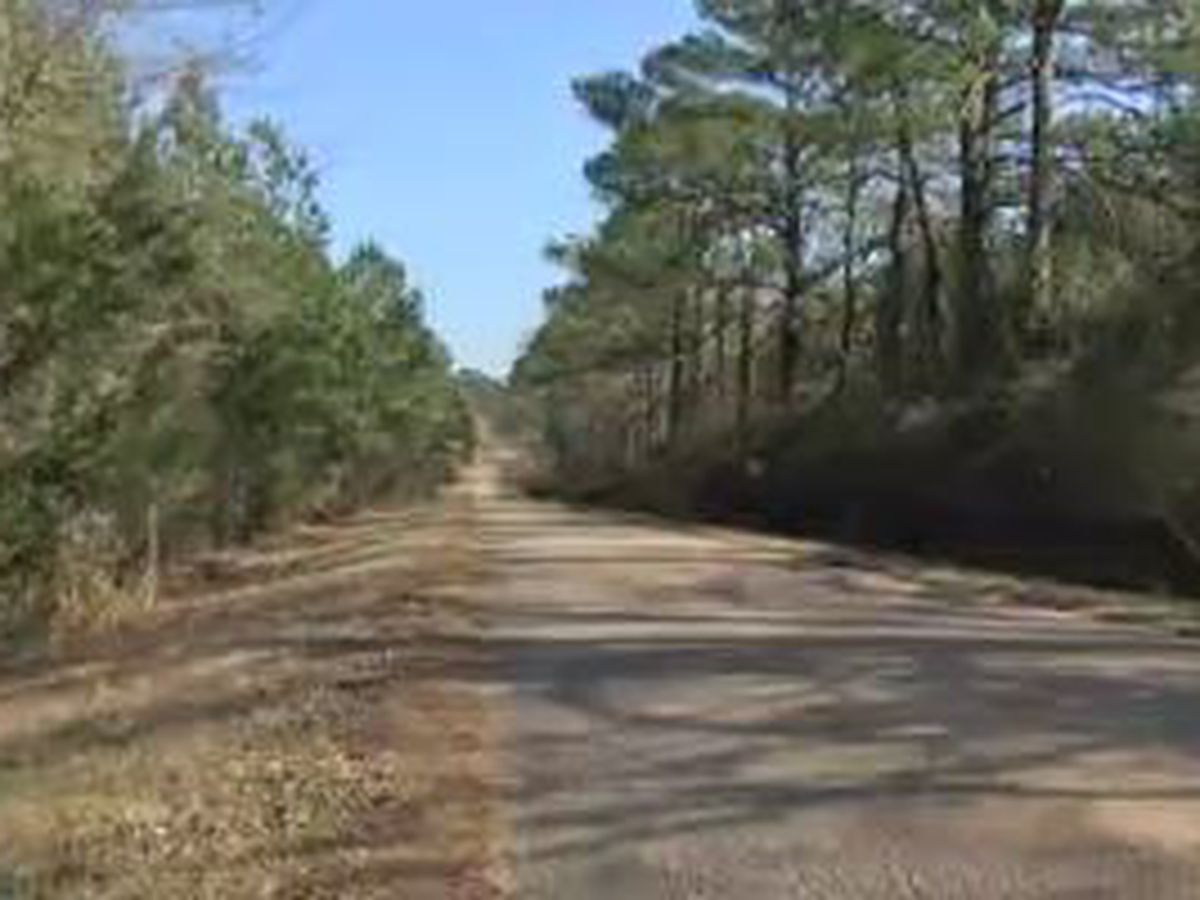 3 East Alabama counties receive state funding for road projects