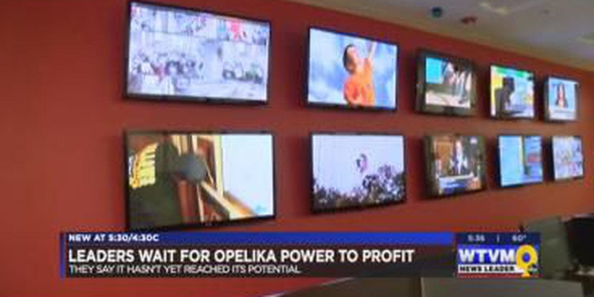 Opelika city leaders expect to profit from telecommunications investment
