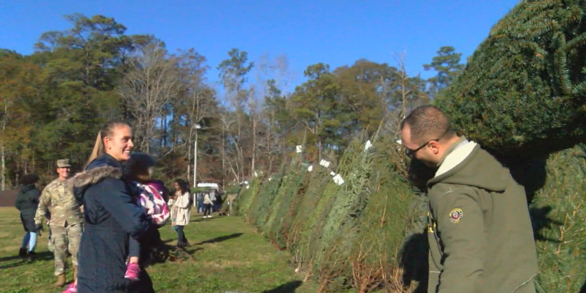 Trees for Troops provides service members with free Christmas trees