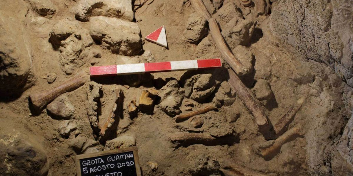Archaeologists discover remains of 9 Neanderthals near Rome
