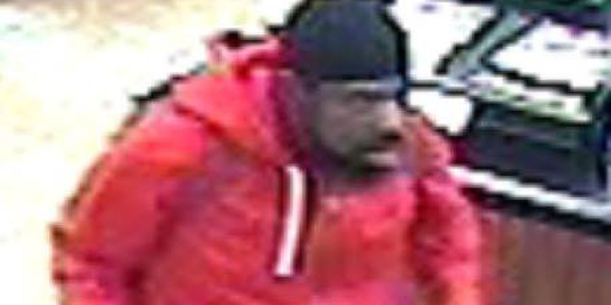 Columbus Police looking for stolen vehicle suspect