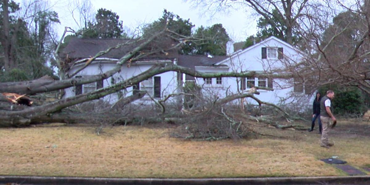 Many without power as power crews work to assess storm damage in Columbus