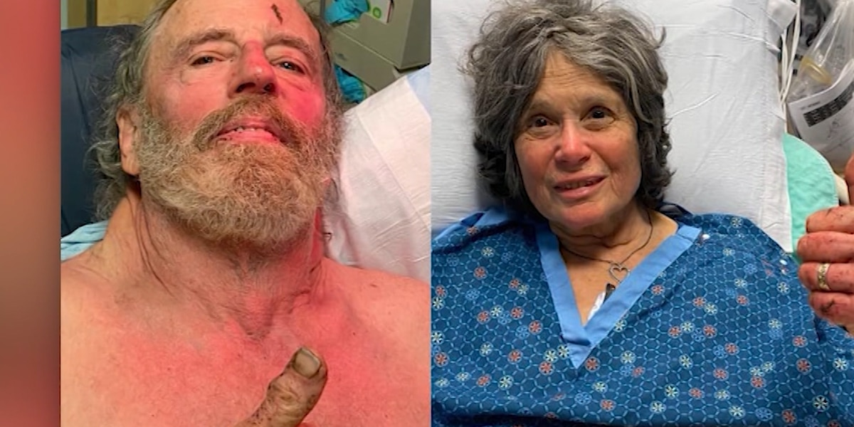 Hikers lost in forest for a week found alive in Calif.