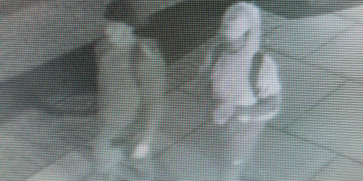 The Robbery and Assault Unit of CPD needs assistance seeking two individuals