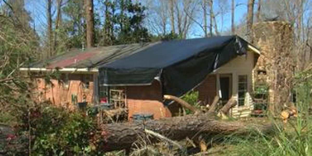 Ellerslie family recovering after property damaged by tornado