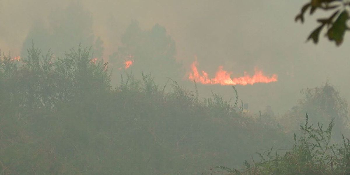 Threat of wildfires growing in Alabama