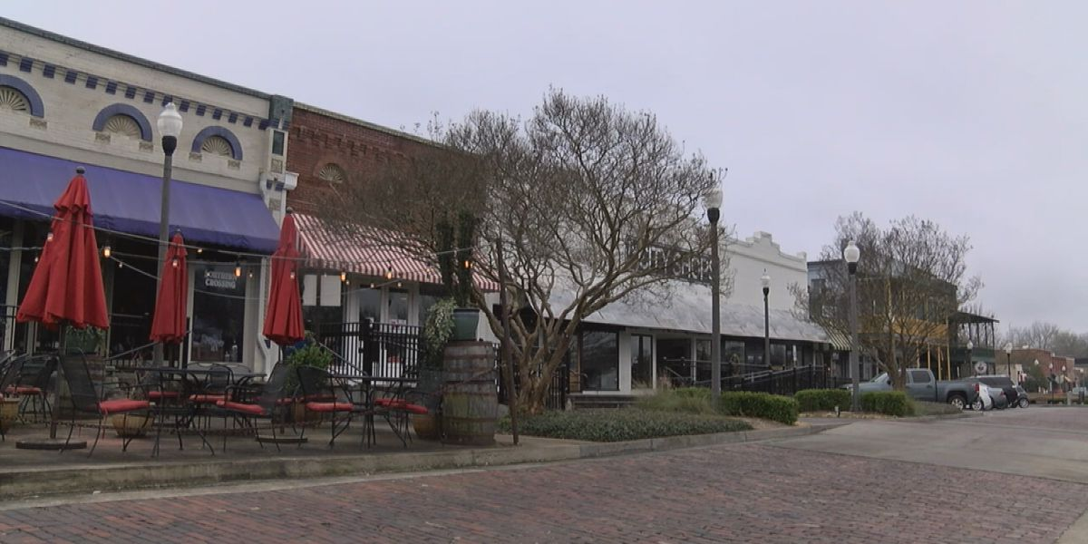 Craft breweries across the nation come together for festival in downtown Opelika