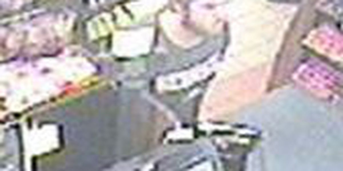 CPD Financial Crimes Unit seeks credit card theft 'person of interest'