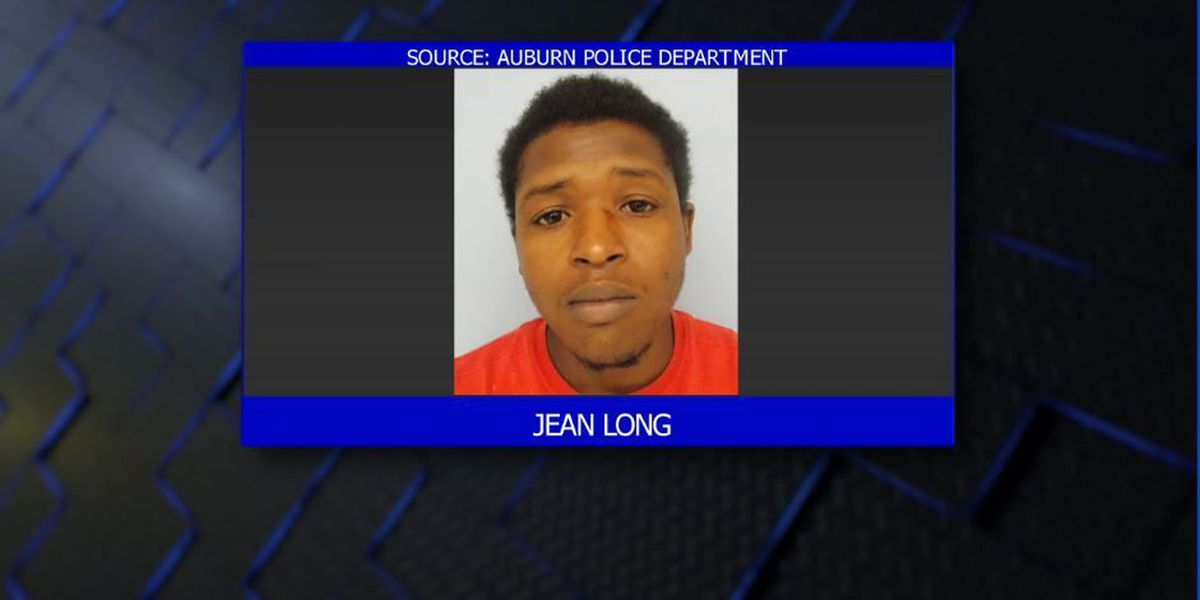 Auburn man arrested on burglary, theft charges