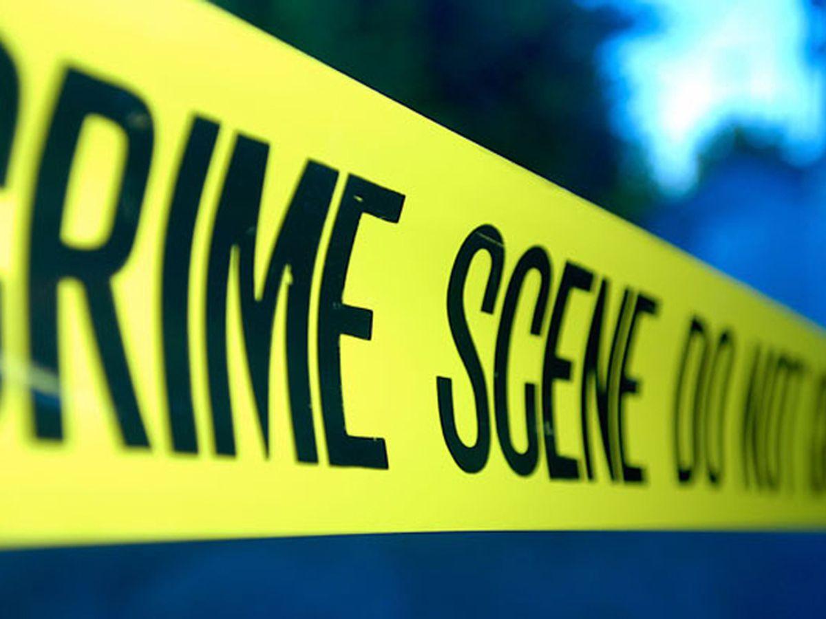 Former local radio newscaster, husband, son found dead; GBI investigates