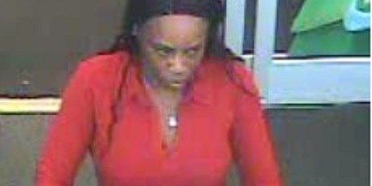 Opelika police searching for credit card theft suspect