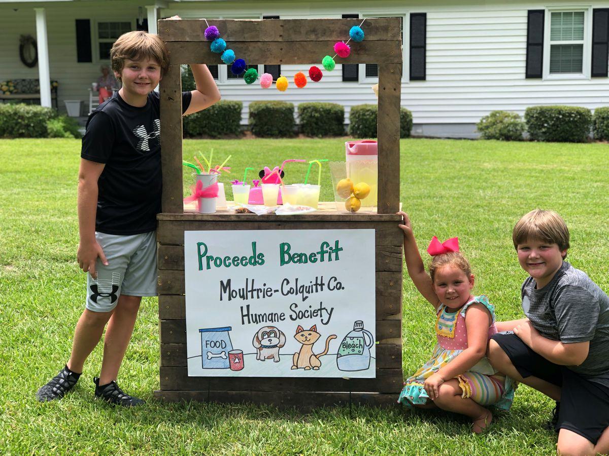 Moultrie kids give back after major sale in lemonade stand