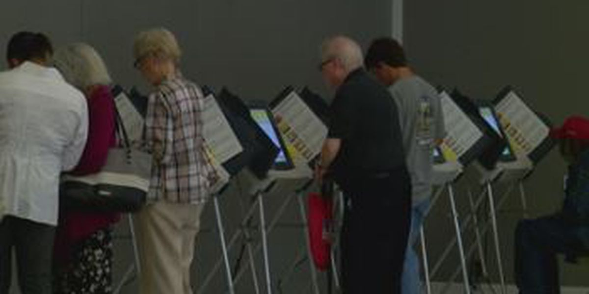 Midterm election sets record for voter turnout