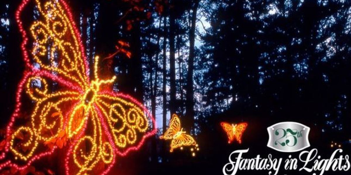 Callaway Gardens Adds New Scene To Fantasy In Lights
