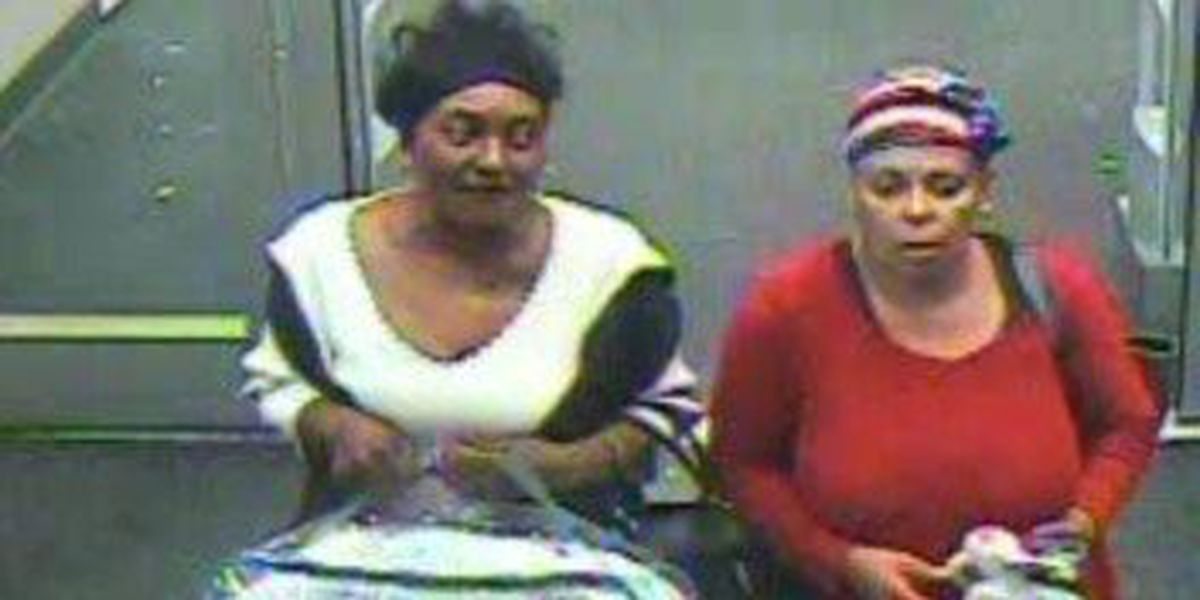 Opelika police searching for Target credit card fraud suspects