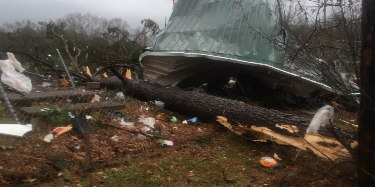 National Weather Service says tornado hit Hale County Tuesday morning