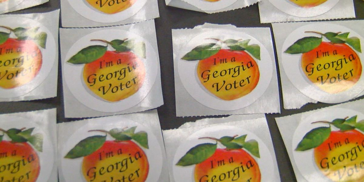 Voters in Muscogee County facing a big decision year in 2020
