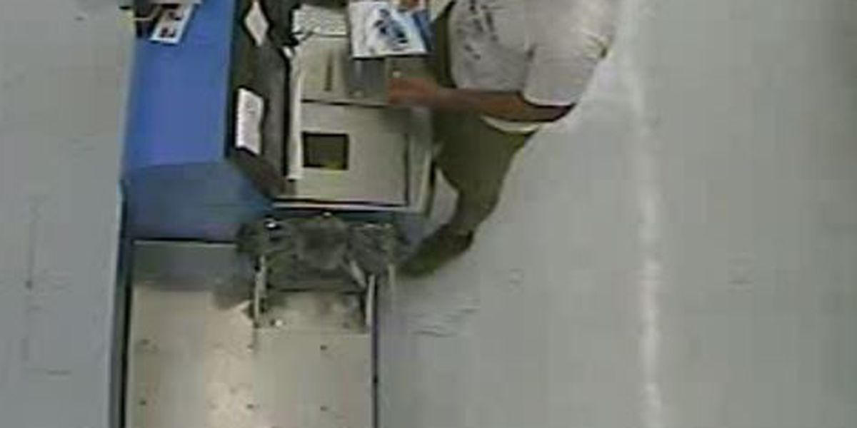 CPD search for credit card theft suspect
