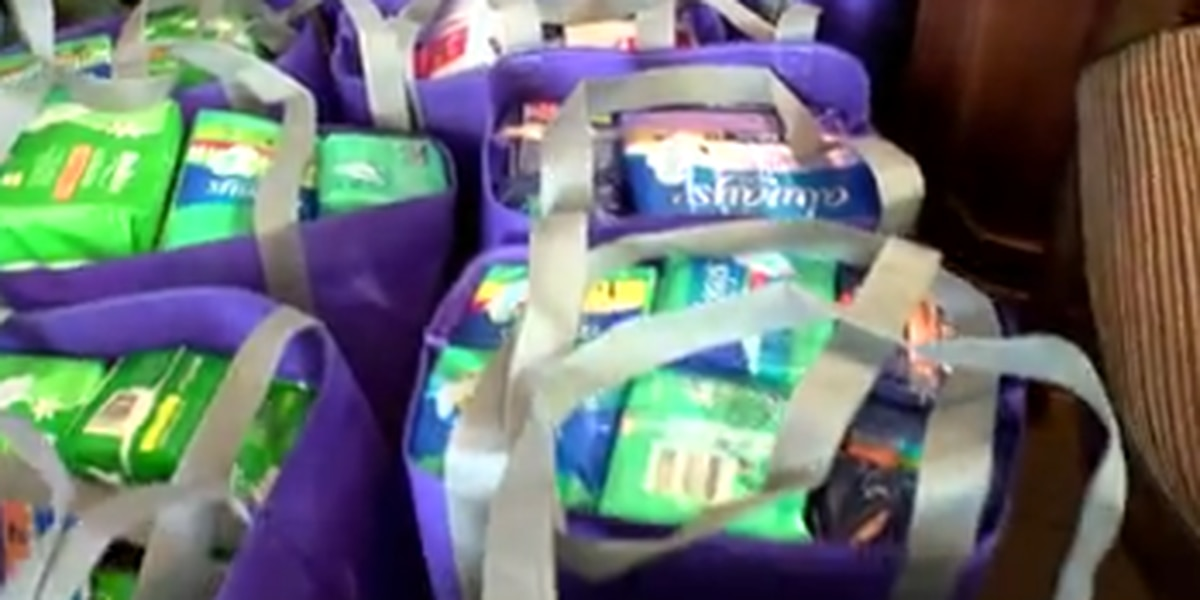 Ga. state senator hosts hygiene product drive in Columbus