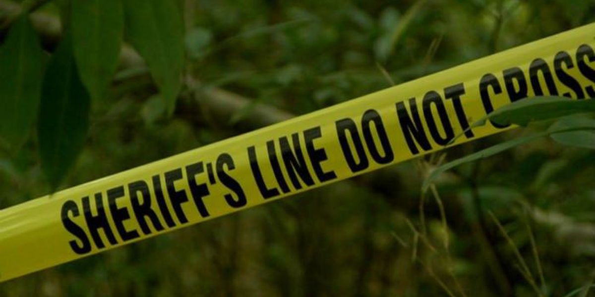 Investigators search for answers after human remains discovered in Lee County