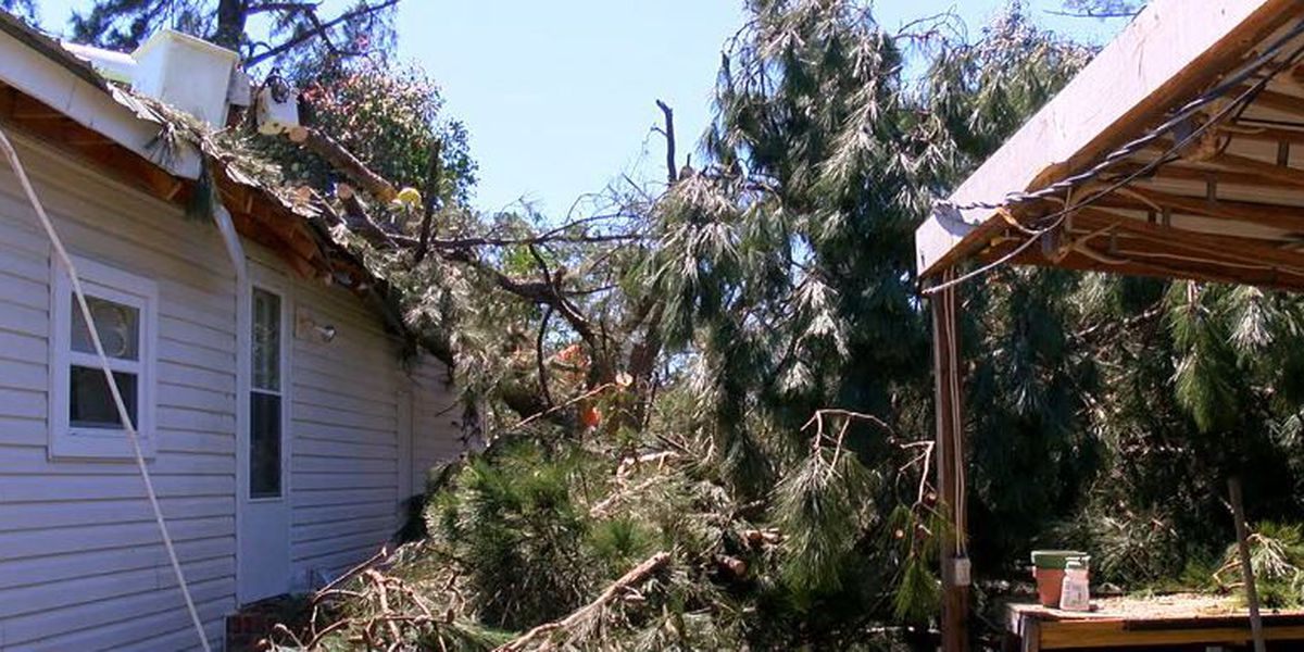 Schley County recovering from Monday tornado