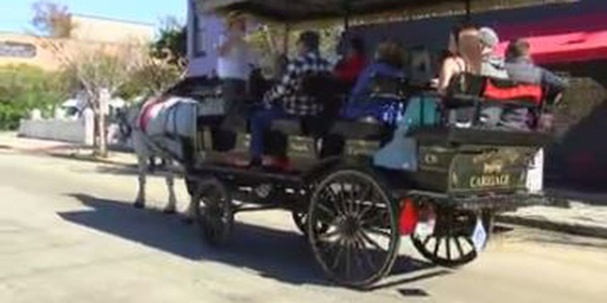 Public meetings underway in Columbus to discuss horse and buggy ordinance