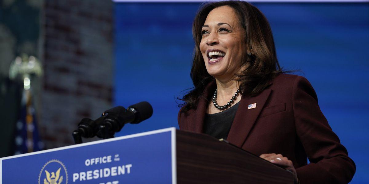 Democrats control Senate; Biden intelligence chief confirmed