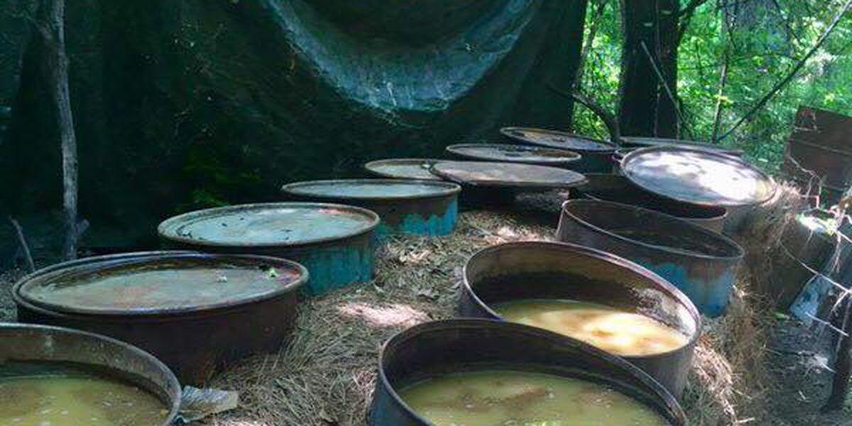 Eufaula neighbors puzzled by illegal moonshine operation