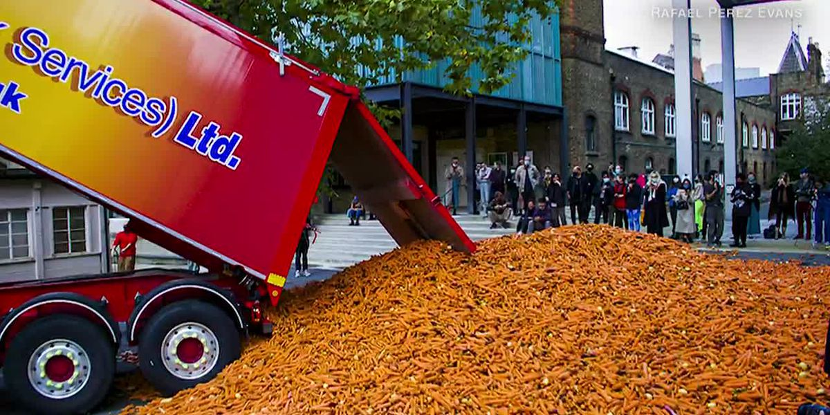 Artist dumps 31 tons of carrots on city street