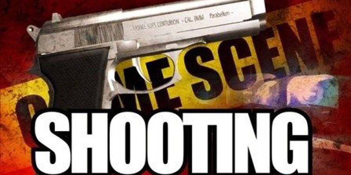 Opelika man dies from gunshot wound, coroner confirms