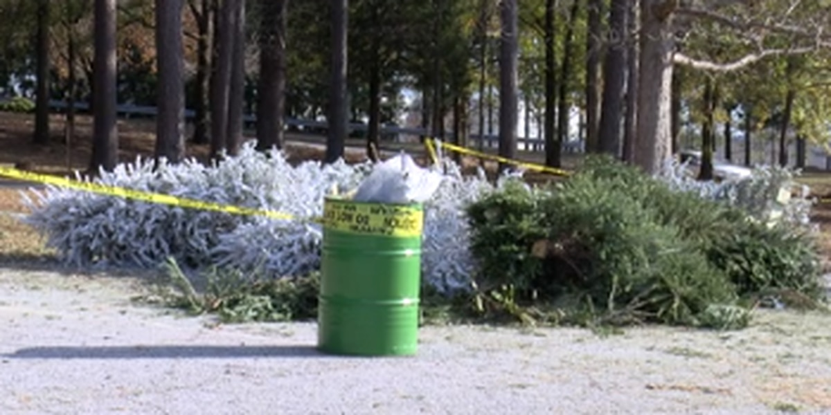 Several sites located in Columbus to dispose Christmas trees