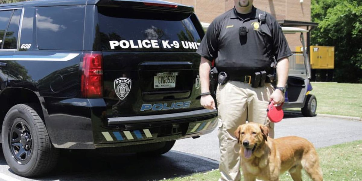 CSU police K9 to get donation of body armor