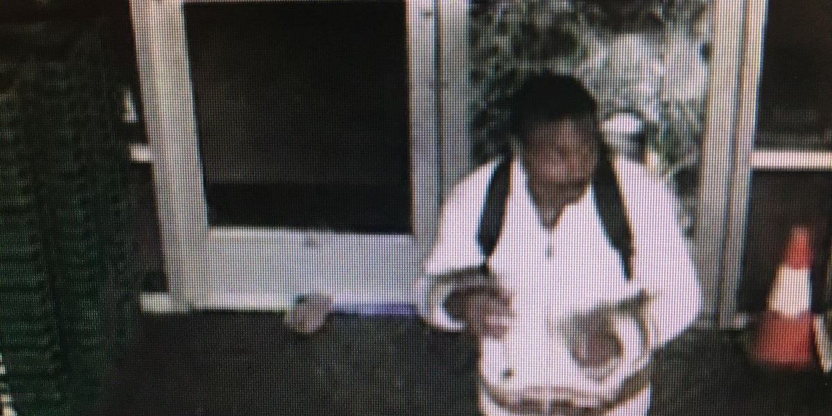 PHOTOS: CPD searching for Dollar Tree, Comfort Inn burglary suspects