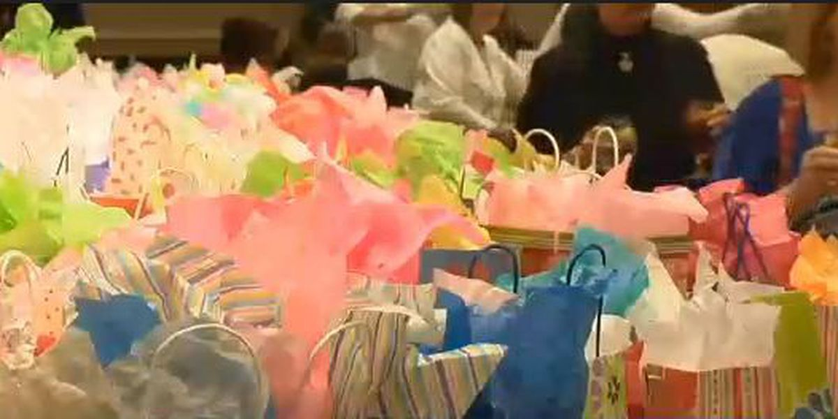 5th annual Power of the Purse Luncheon helps local women, girls in need