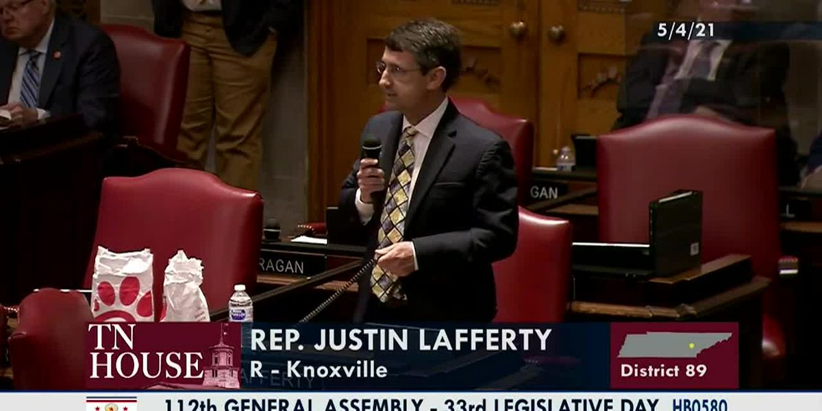 Tenn. lawmaker: Three-Fifths Compromise was to end slavery