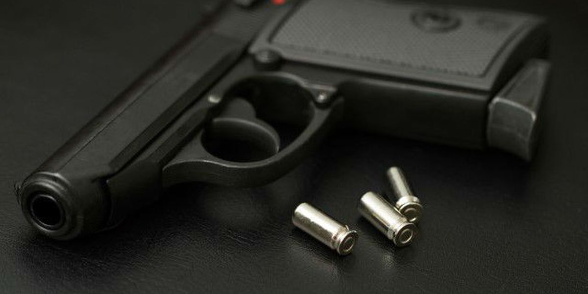 Gun-toting 78-year-old woman chases burglars from home
