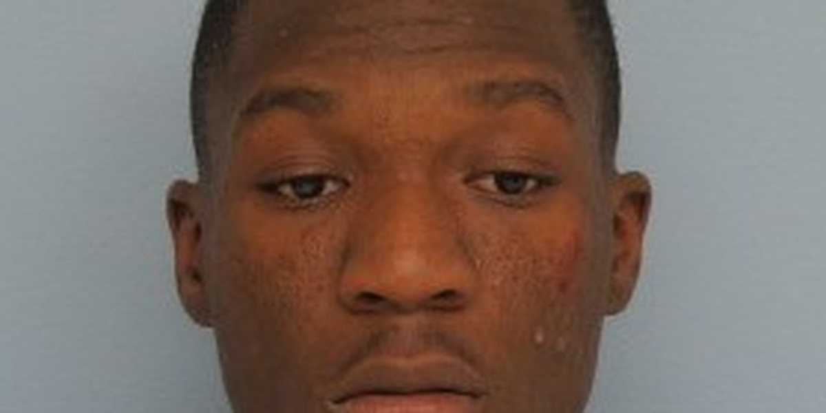 Auburn man charged with burglary, theft of property