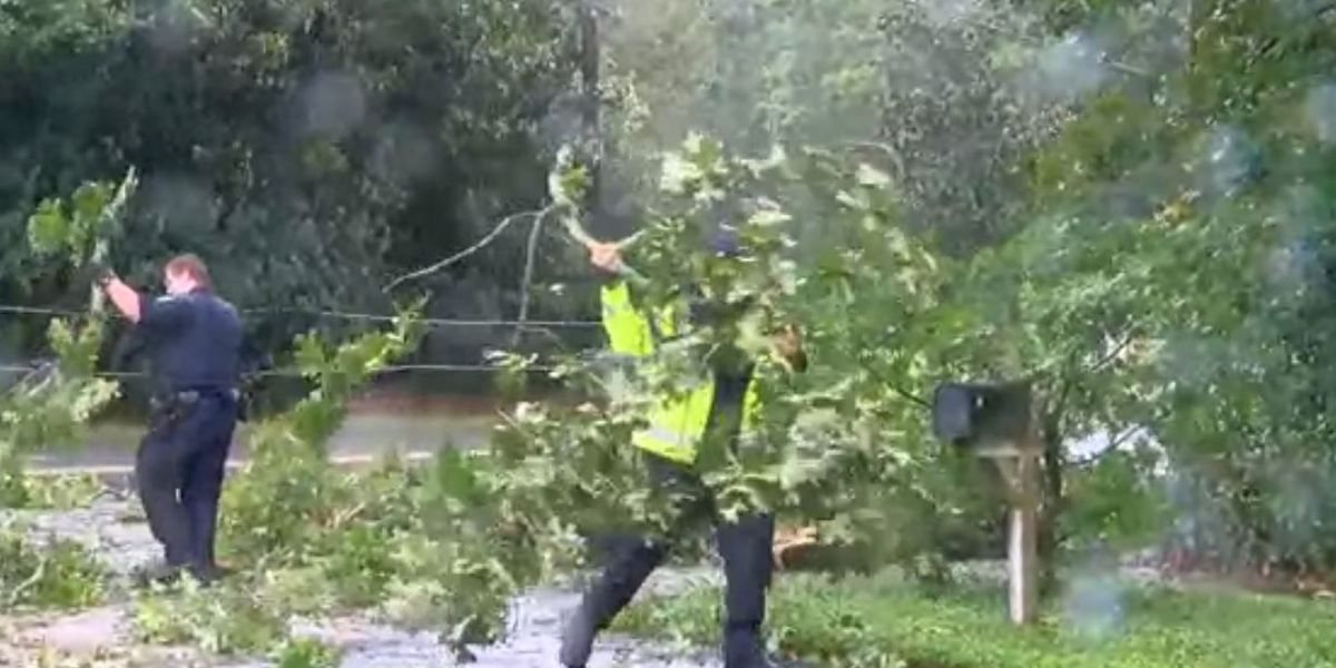 Power outages, trees down reported in East Alabama