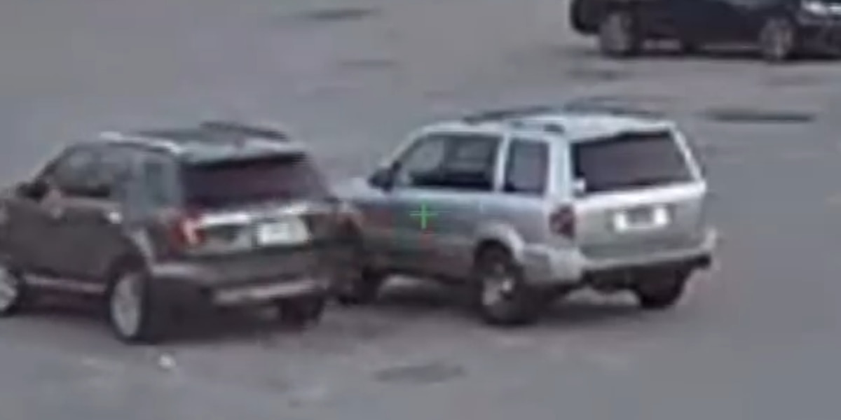 LaGrange police release surveillance video of car theft
