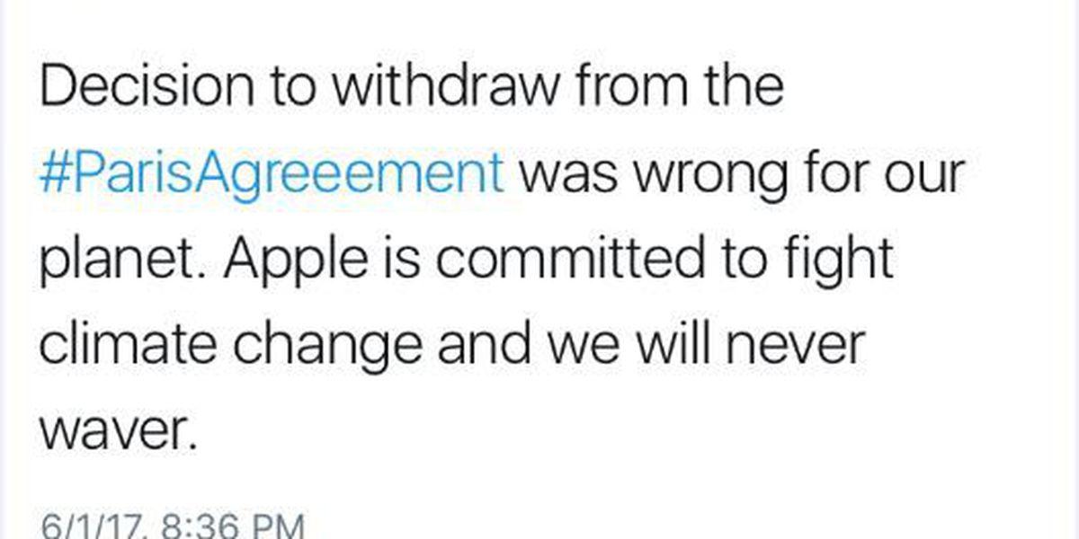 Auburn alum-Apple CEO responds to U.S. withdrawal of Paris Climate Accord