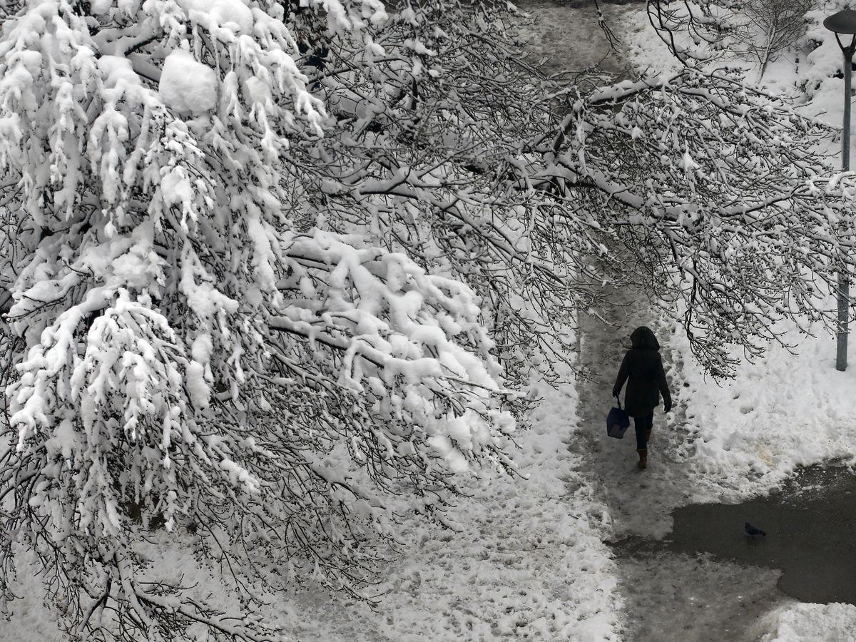 Man dies in cold spell in Serbia; schools close in Bosnia