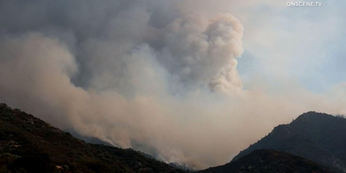 Firefighter dies battling California wildfire
