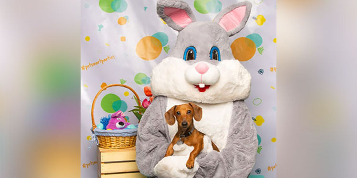 PetSmart offering FREE photo with the Easter Bunny