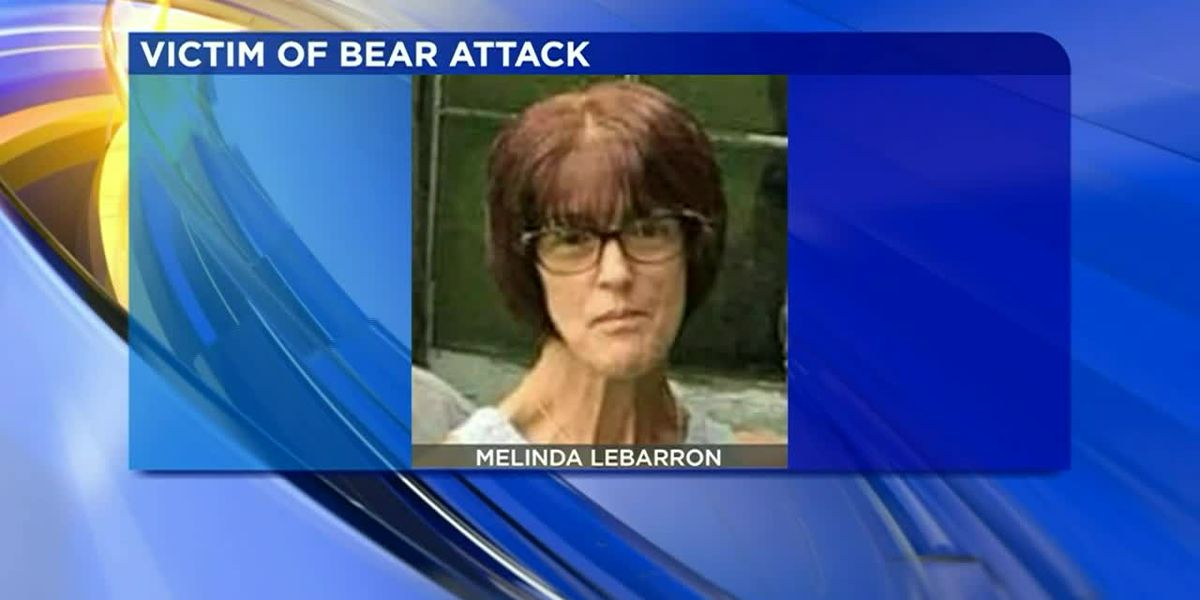 Bear attack lands woman in hospital