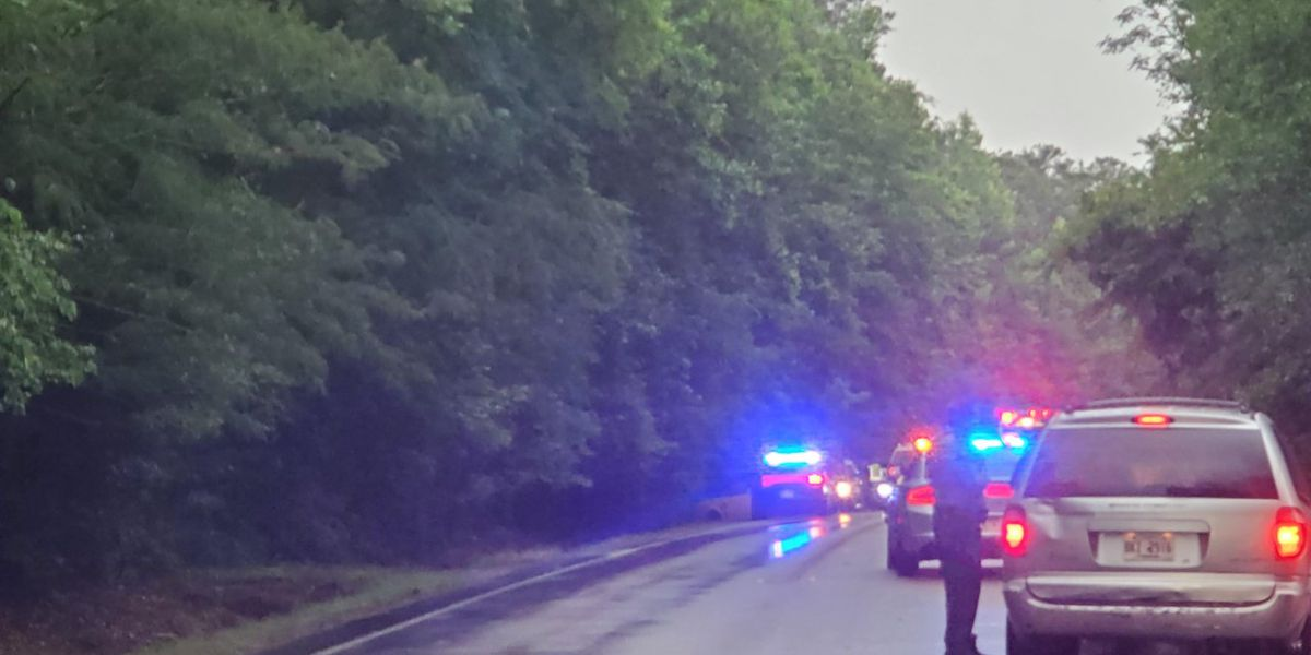 TRAFFIC ALERT: Police on scene of motor vehicle accident on 219 near Bartley Rd.
